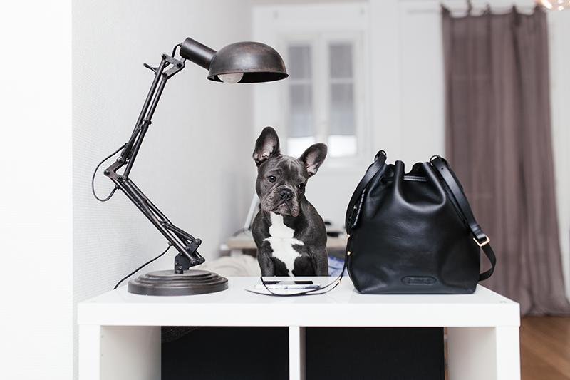 lyloutte-sac-ralph-lauren-izo-frenchbulldog
